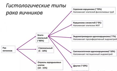 Гистологические типы рака яичников