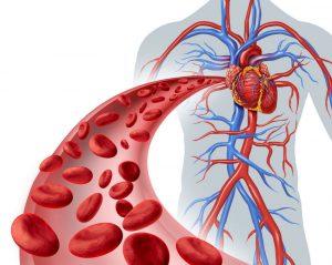 Улучшение местного кровообращения