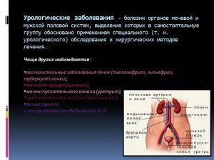 Воспалительные процессы мочевыделительной системы