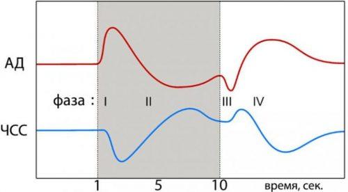 Изменение показателей АД и частоты ЧСС при пробе Вальсальвы