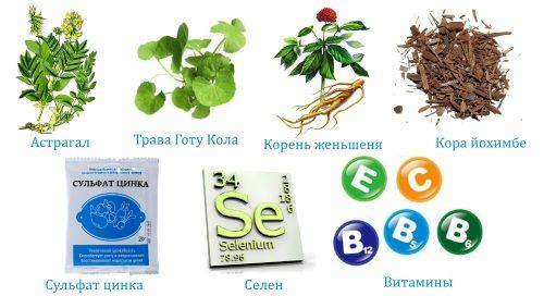 Состав биодобавки