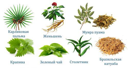 Состав Максодерма
