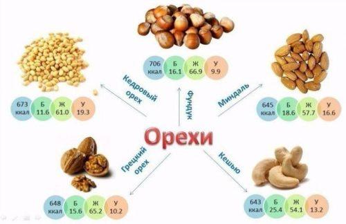 Пищевая ценность орехов