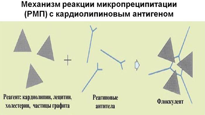 Механизм реакции