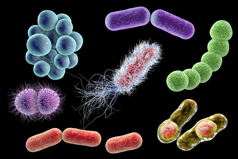 урогенитальные инфекции