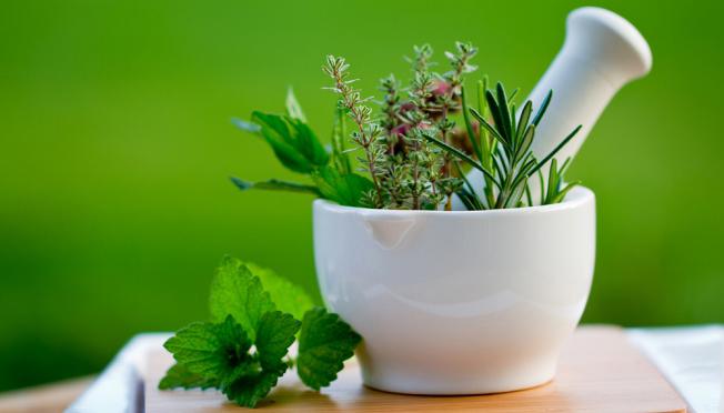 Лечение молочницы травами - эффективные рецепты