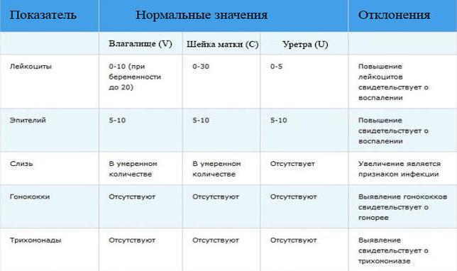 bakposev-vlagalisha-dlya-chego