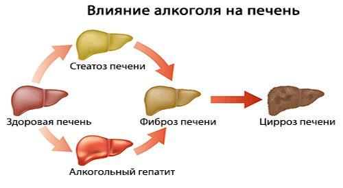 Как лечить печень после алкоголизма