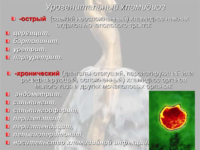 Экспресс-тест на хламидиоз: цена, правила использования